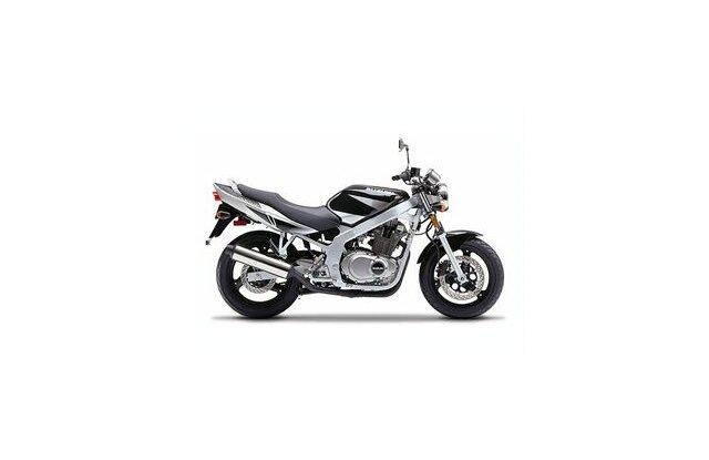 Suzuki Gs 500 2010