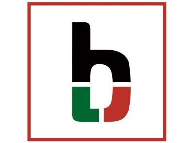 Bicudo Motors